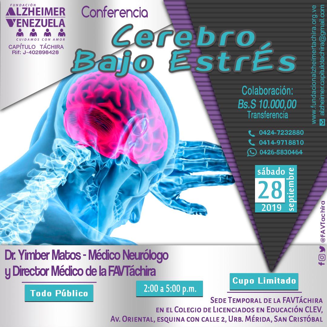 Cerebro Bajo Estrés